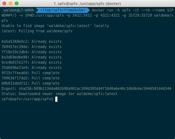 SharePoint Framework-docker-run-first-time